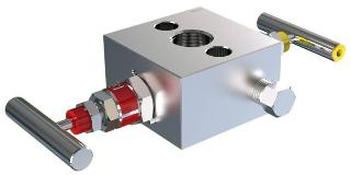 2-Valve Manifold Direct Mount - Model AIM2 Generation 200 Series