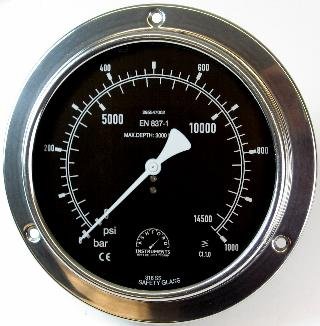 Compensated Subsea Pressure Gauge - 250mm Stainless Steel Case